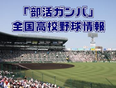 高校 野球 静岡 大会 結果